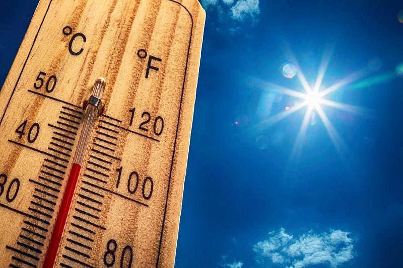 В плену у солнца: жара до +40 градусов ожидается в Краснодарском крае в выходные