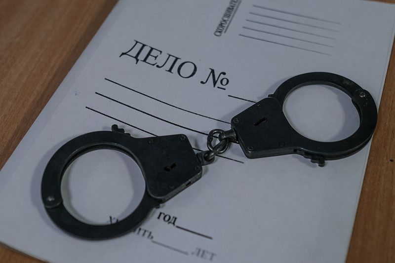 Двоим мужчинам грозит тюремный срок за незаконный спил 42 деревьев