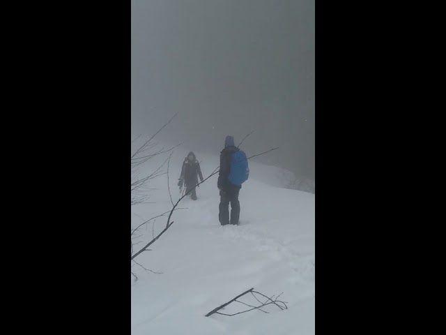 Спасатели нашли сноубордистку в Сочи