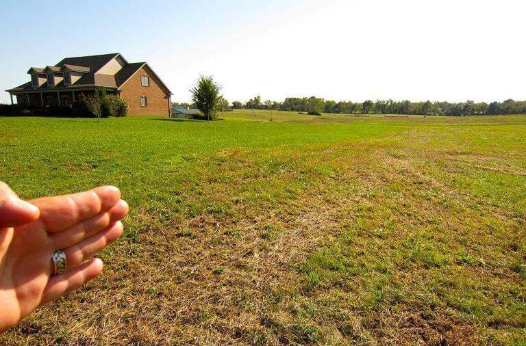 где выдают земельные участки многодетным семьям
