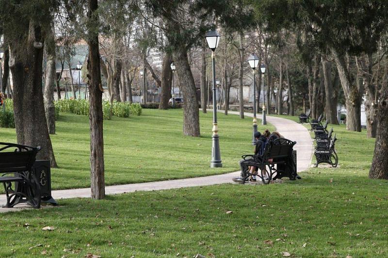 Вкрае 70 процентов зеленой территории поставили накадастровый учет— руководитель Кубани