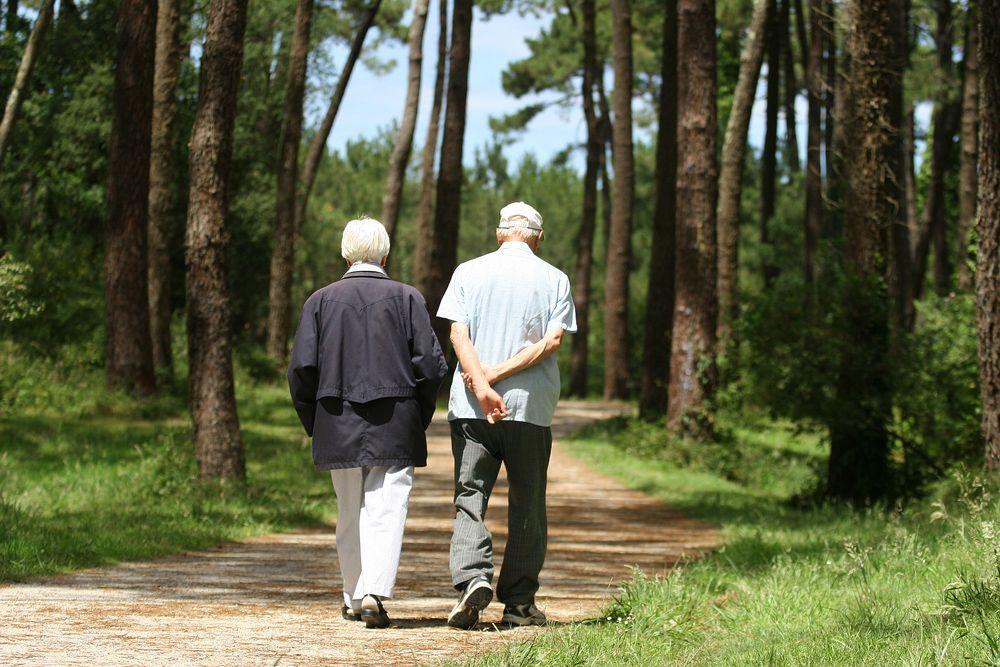 Ученые: Прогулки насвежем воздухе продлевают жизнь
