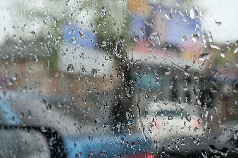 Дожди с грозами ожидаются на Кубани 23 мая