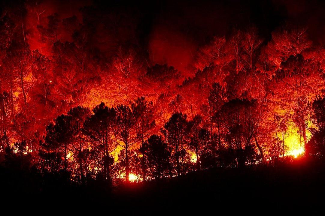 Июль пышет огнем: как избежать трагедии в сезон высокой пожароопасности