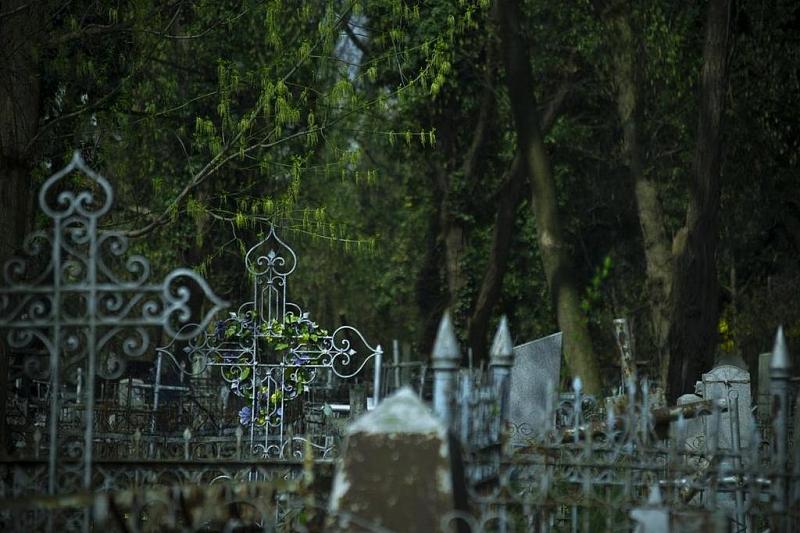 В Краснодарском крае рекомендовано закрыть кладбища на Радоницу