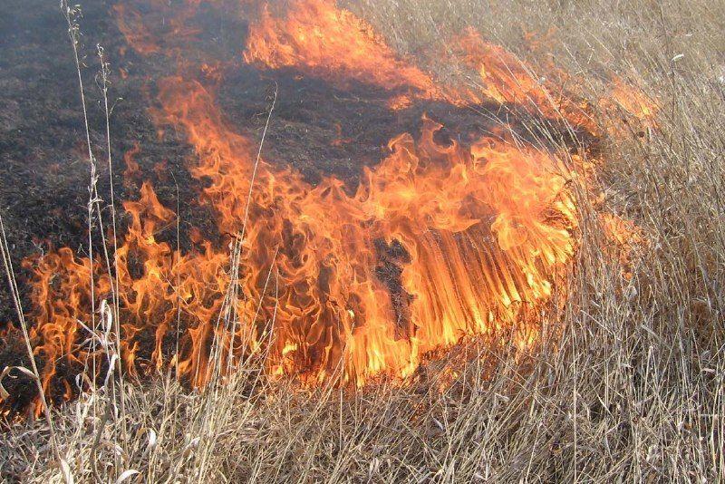 В Краснодаре ввели особый противопожарный режим