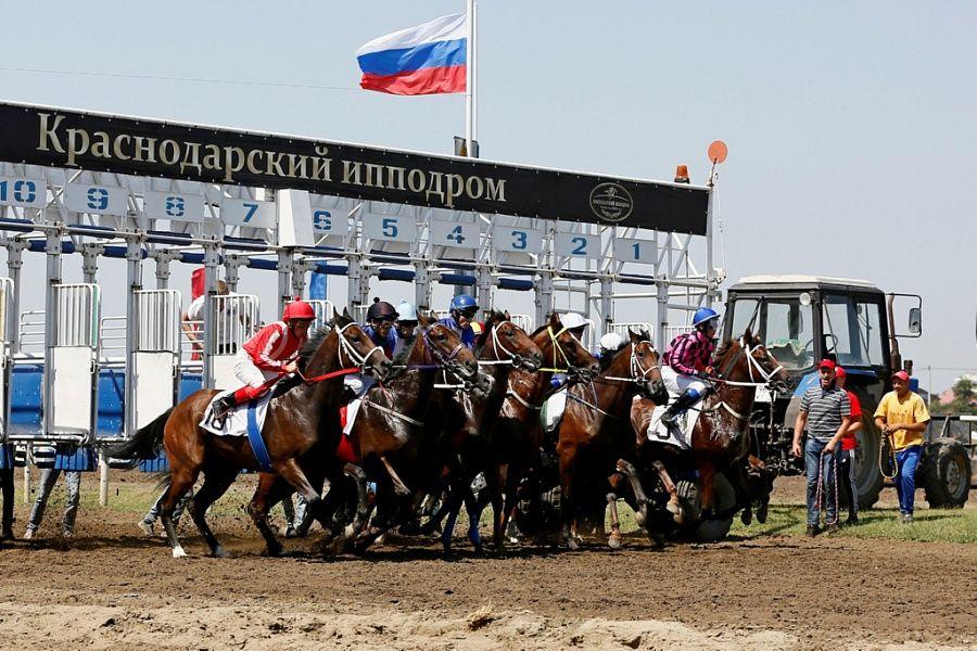 Скаковой сезон наКраснодарском ипподроме откроют 22апреля