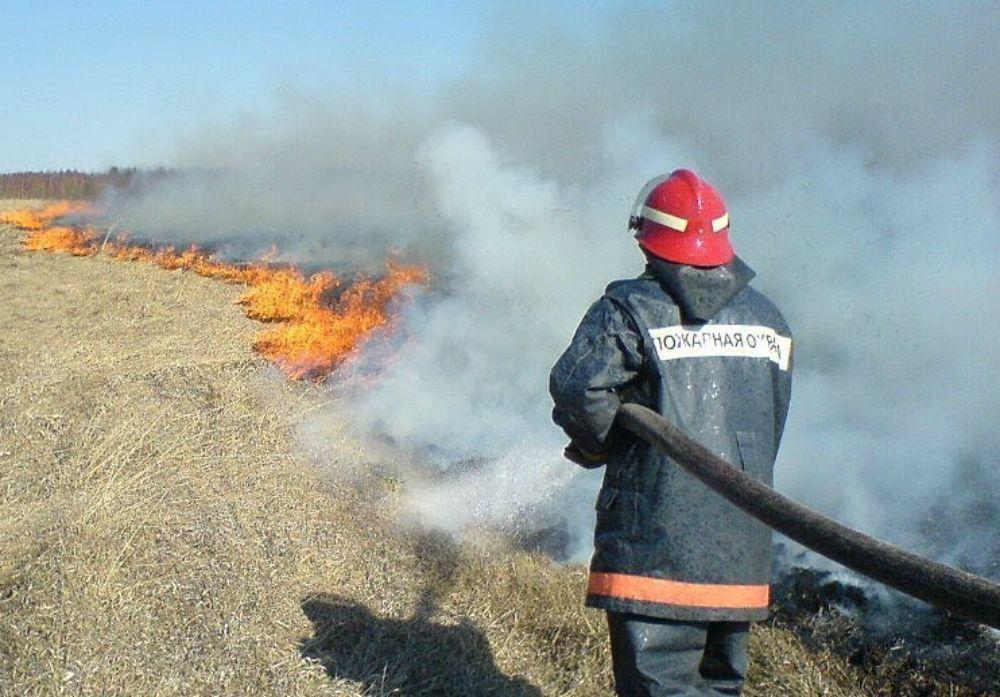 В Новороссийске за сутки четыре раза загорелась сухая трава