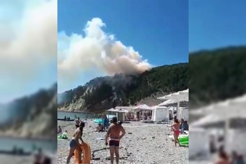 Площадь лесного пожара в Туапсинском районе составляет 0,5 га