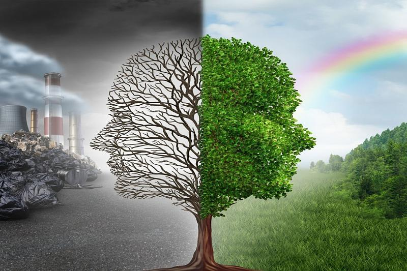 думаю картинка понятия экология картинки, которых наглядно