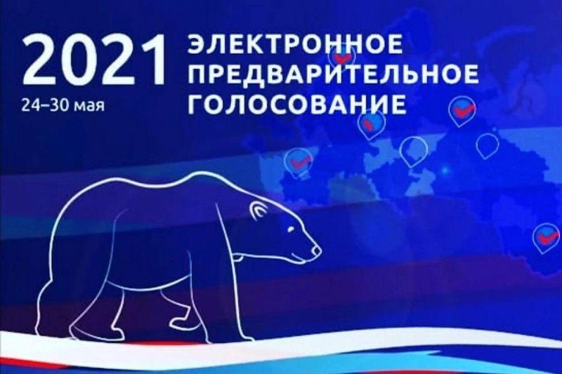 Праймериз «Единой России» стартует в ночь на 24 мая
