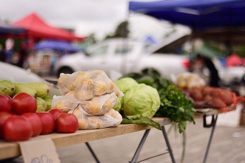 На открытых в субботу шести ярмарках Краснодара планируется реализовать 50 тонн сельхозпродуктов