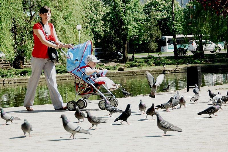 Выплаты на детей до трех лет по национальному проекту «Демография» в Краснодарском крае получают более 83 тысяч семей