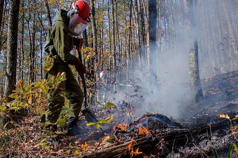 В Краснодарском крае введен повышенный уровень пожарной опасности