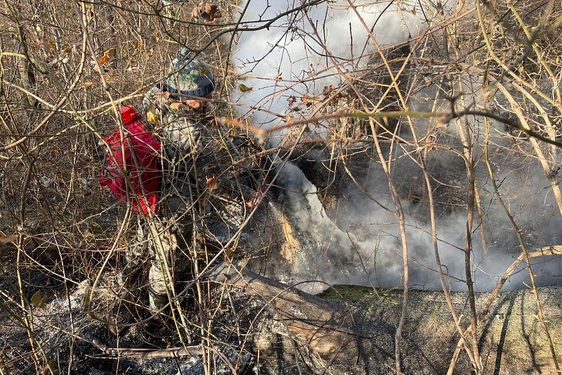 В Краснодарском крае локализованы четыре из шести природных пожаров