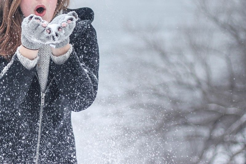 В Гидрометцентре пообещали теплую зиму