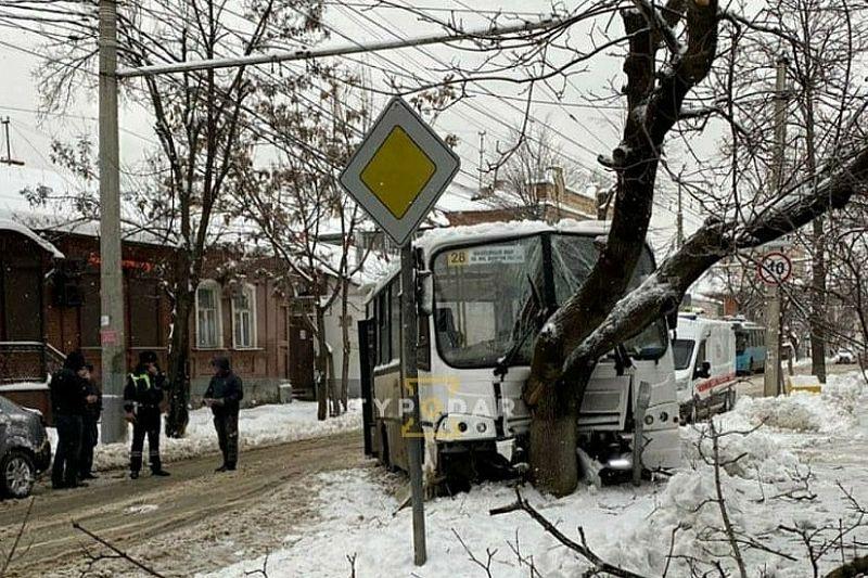 В центре Краснодара автобус с пассажирами врезался в дерево