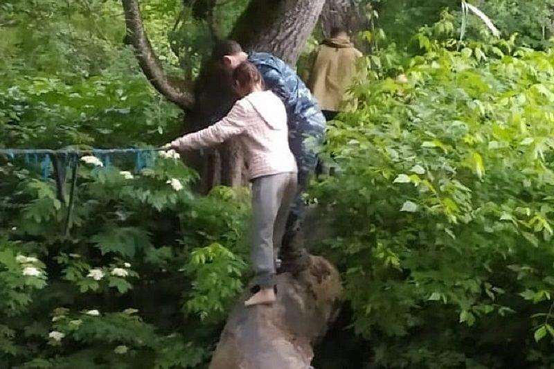 В Горячем Ключе спасатели вывели из леса заблудившихся грибников