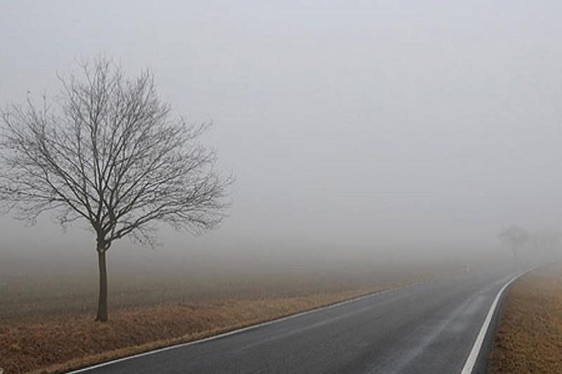 Госавтоинспекция призывает водителей быть внимательнее на дорогах из-за тумана