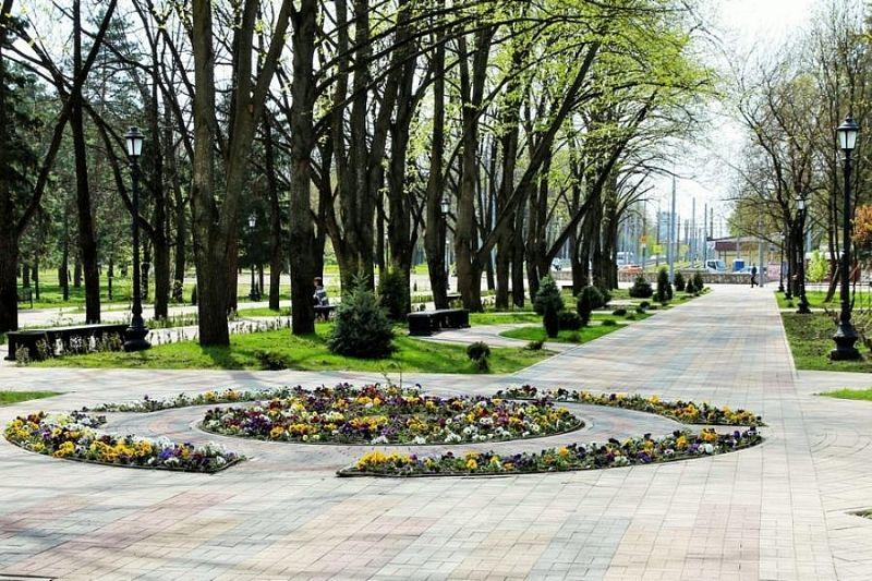 Глава Краснодара объяснил, почему на городских клумбах мало цветов