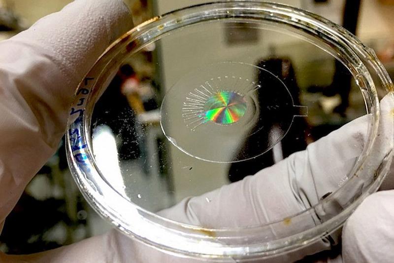 Ученые представили электронные линзы, которые работают лучше человеческого глаза